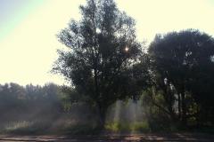 Winnaars-Stad-Natuur-KidzKlix-02